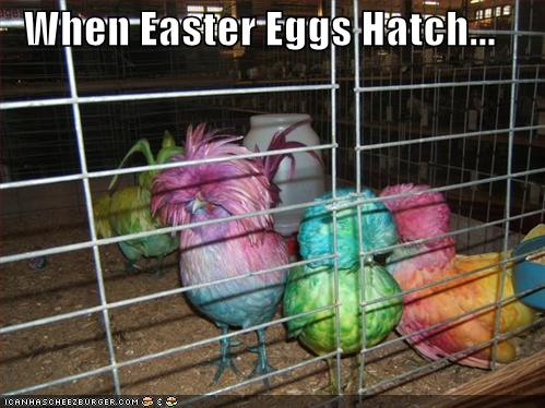 Funny Pictures Adult Humor Easter